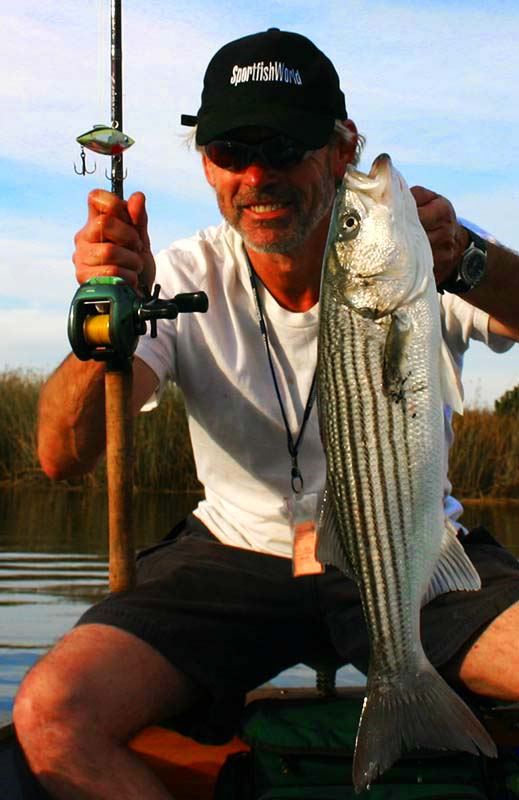 Napa River Striped Bass fishing with Wombat Charters and Capt.